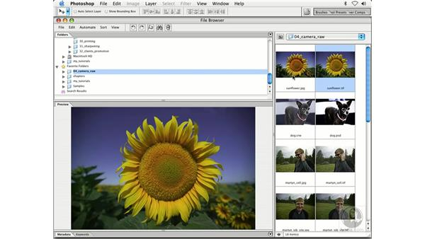 raw overview: Enhancing Digital Photography with Photoshop CS