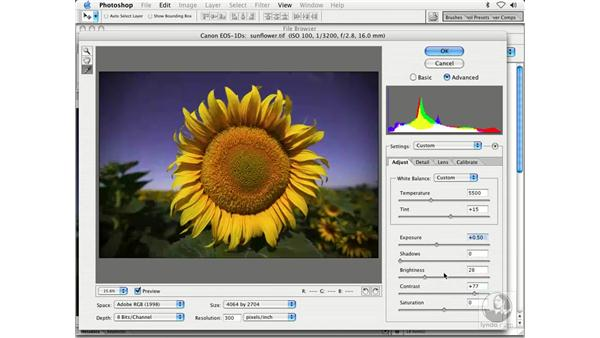 camera raw plug-in 2: Enhancing Digital Photography with Photoshop CS