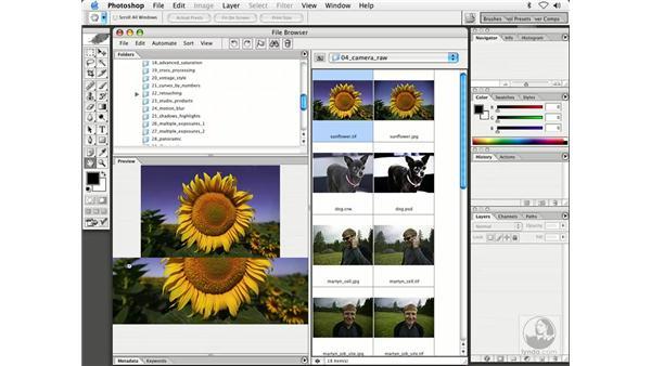 camera raw plug-in 3: Enhancing Digital Photography with Photoshop CS