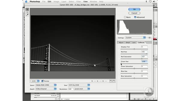 camera raw creativity 2: Enhancing Digital Photography with Photoshop CS