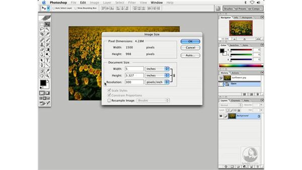 image resizing 1: Enhancing Digital Photography with Photoshop CS