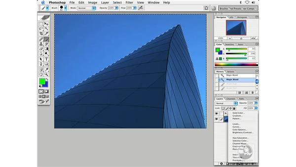 select and correct: Enhancing Digital Photography with Photoshop CS
