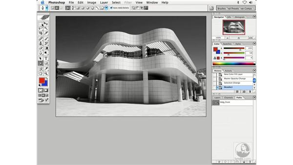 path selection 2: Enhancing Digital Photography with Photoshop CS