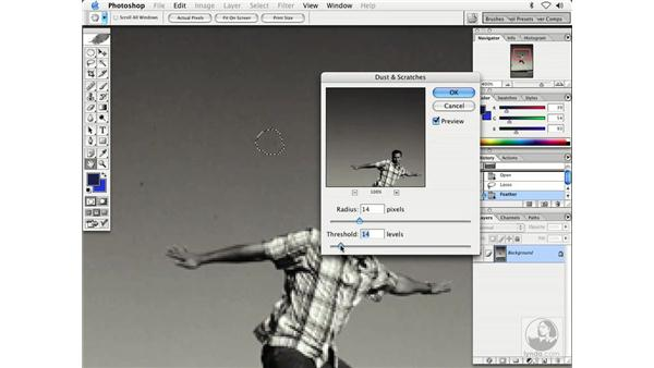 dust and scratches filter: Enhancing Digital Photography with Photoshop CS