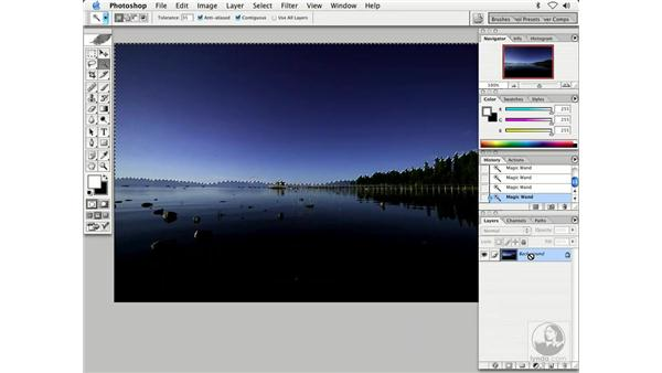 dust in large area: Enhancing Digital Photography with Photoshop CS
