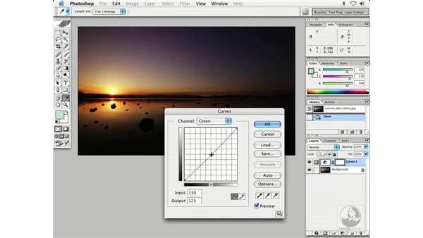 curves color and tone 2: Enhancing Digital Photography with Photoshop CS