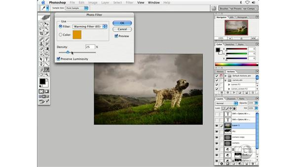 burn and dodge 4: Enhancing Digital Photography with Photoshop CS