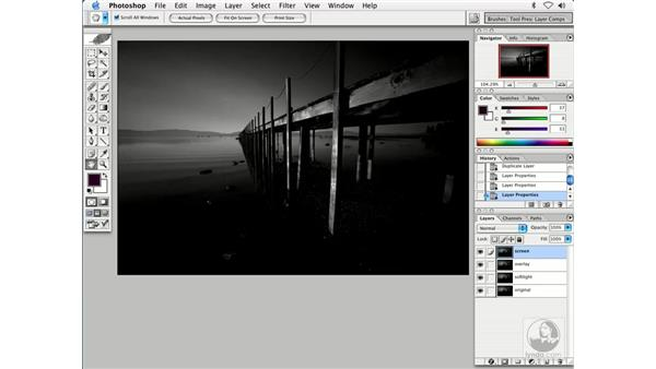 enhancing BW: Enhancing Digital Photography with Photoshop CS