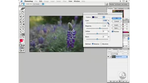 changing color 1: Enhancing Digital Photography with Photoshop CS