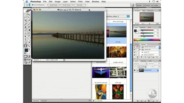 changing color 3: Enhancing Digital Photography with Photoshop CS