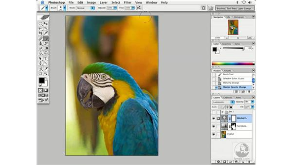 changing color 7: Enhancing Digital Photography with Photoshop CS