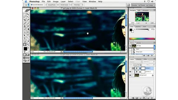 cross processing 2: Enhancing Digital Photography with Photoshop CS
