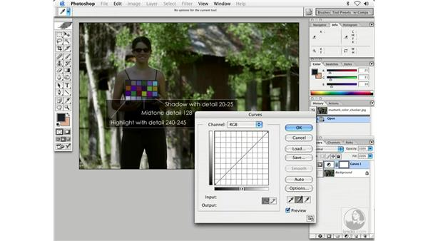 curves by the numbers 1: Enhancing Digital Photography with Photoshop CS