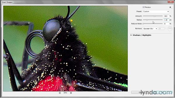 Gauging the best sharpening settings: Photoshop CC 2013 One-on-One: Intermediate