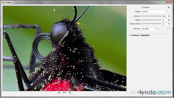 The Remove and Reduce Noise options: Photoshop CC 2013 One-on-One: Intermediate