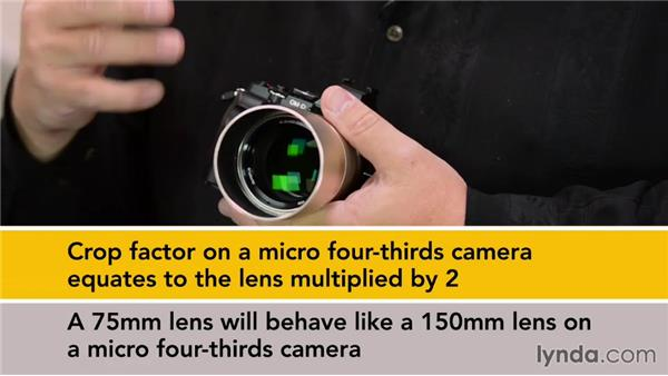 How and why mirrorless cameras are special: Up and Running with Micro Four-Thirds Cameras