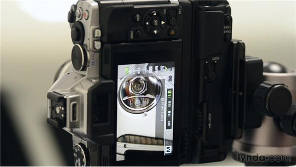 Using image stabilization for sharper photos: Up and Running with Micro Four-Thirds Cameras