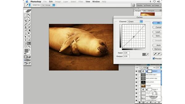 nature 4: Enhancing Digital Photography with Photoshop CS