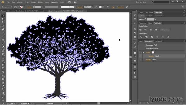 Merging layers and uniting paths: Illustrator CC 2013 One-on-One: Intermediate