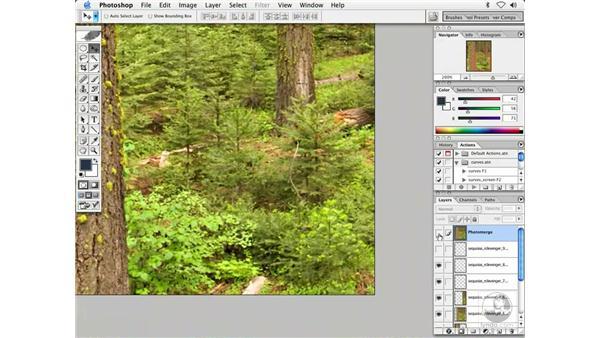 pano 2 - sequoia: Enhancing Digital Photography with Photoshop CS
