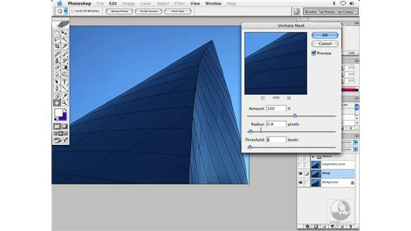 unsharp mask 2: Enhancing Digital Photography with Photoshop CS