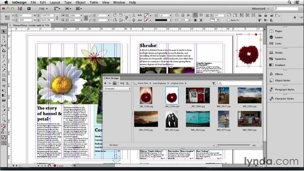 105 Working with MiniBridge: InDesign Secrets