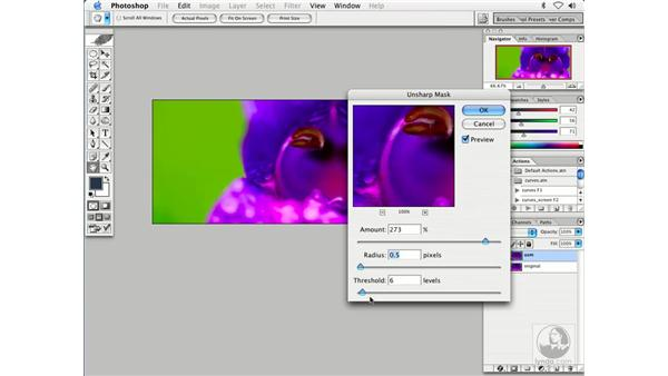 saving web images 1: Enhancing Digital Photography with Photoshop CS