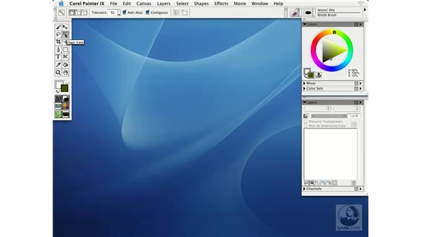 exploring the interface: Getting Started with Corel Painter IX