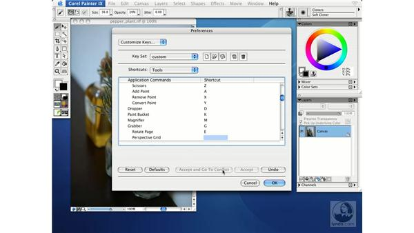 creating custom keyboard shortcuts: Getting Started with Corel Painter IX