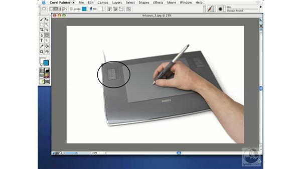 understanding tablet terminology: Getting Started with Corel Painter IX