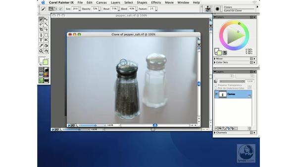 cloning basics: Getting Started with Corel Painter IX