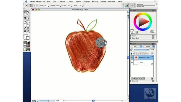 painting with water color: Getting Started with Corel Painter IX