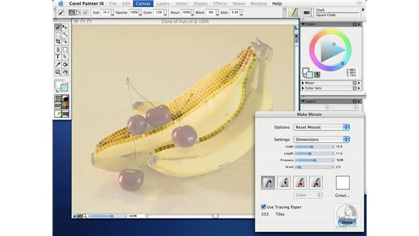 using make mosaic: Getting Started with Corel Painter IX