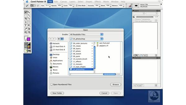 opening adobe photoshop files in corel painter IX: Getting Started with Corel Painter IX