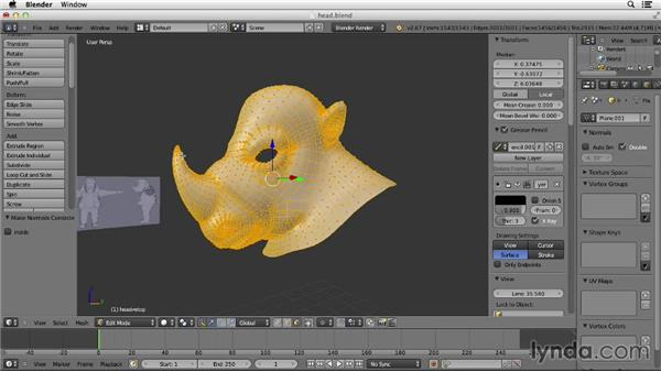Ensuring that the polygon mesh is facing the right direction: Character Modeling in Blender