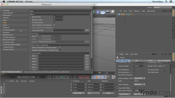 CINEMA 4D Lite preferences and settings: CINEMA 4D Lite for After Effects: Getting Started