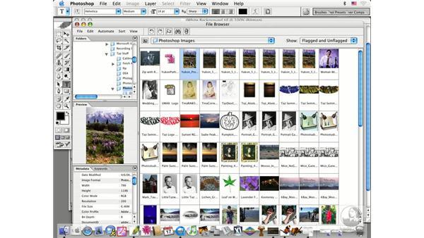 browser intro: Photoshop CS Prepress Essentials