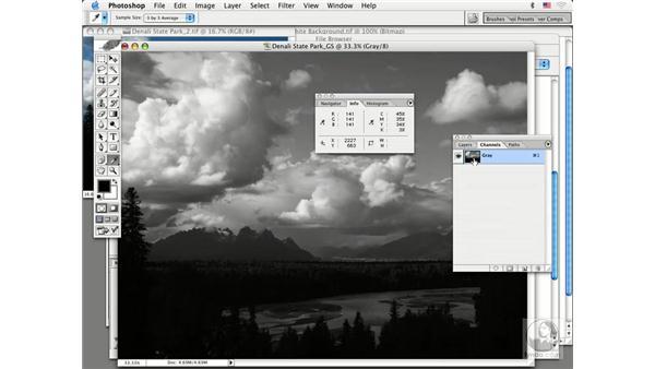 pixel fundamentals: Photoshop CS Prepress Essentials