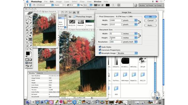 resize and resample: Photoshop CS Prepress Essentials