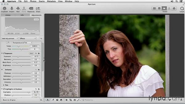 Checking overall exposure: Portrait Retouching with Aperture