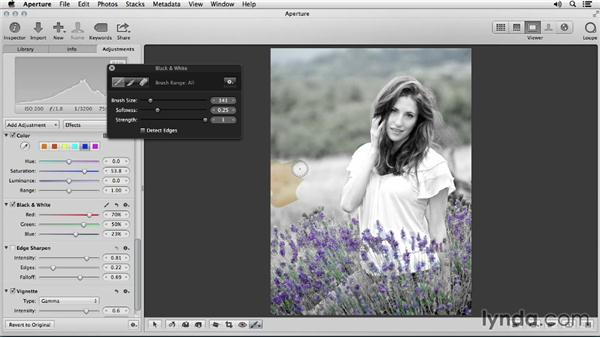 Brushing with effects: Portrait Retouching with Aperture