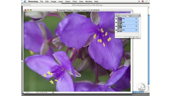 working in lab: Photoshop CS Prepress Essentials
