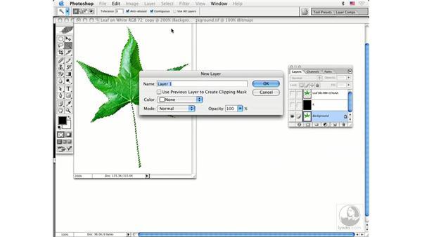 soft silhouettes: Photoshop CS Prepress Essentials