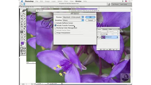 type 2: Photoshop CS Prepress Essentials