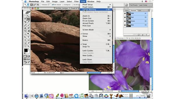 soft proofs: Photoshop CS Prepress Essentials