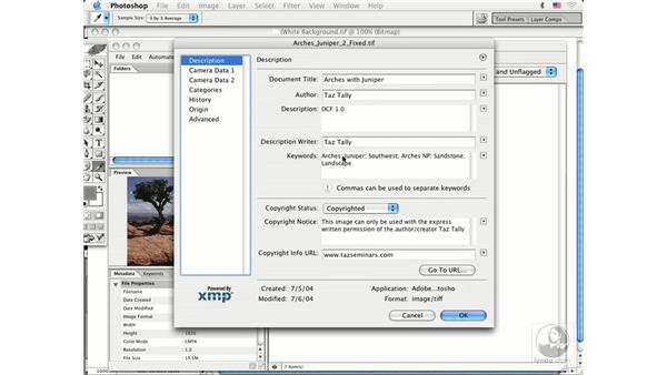 file info: Photoshop CS Prepress Essentials