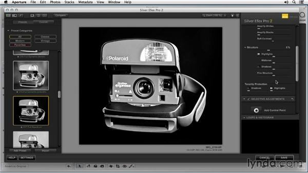 Converting to black and white using Silver Efex Pro: Enhancing Product Photography with Aperture
