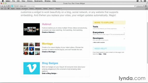 Working with video widgets and plugins: Vimeo Projects for Creative Professionals