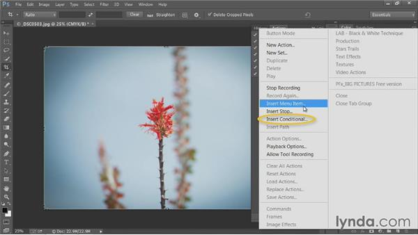 Creating conditional actions: Up and Running with Photoshop Automation