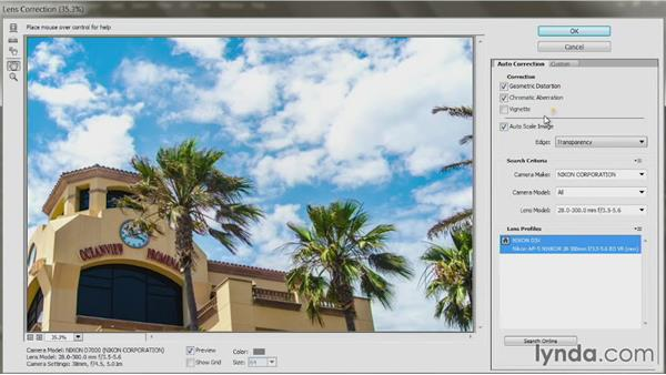 Remove distortion with Lens Correction: Up and Running with Photoshop Automation